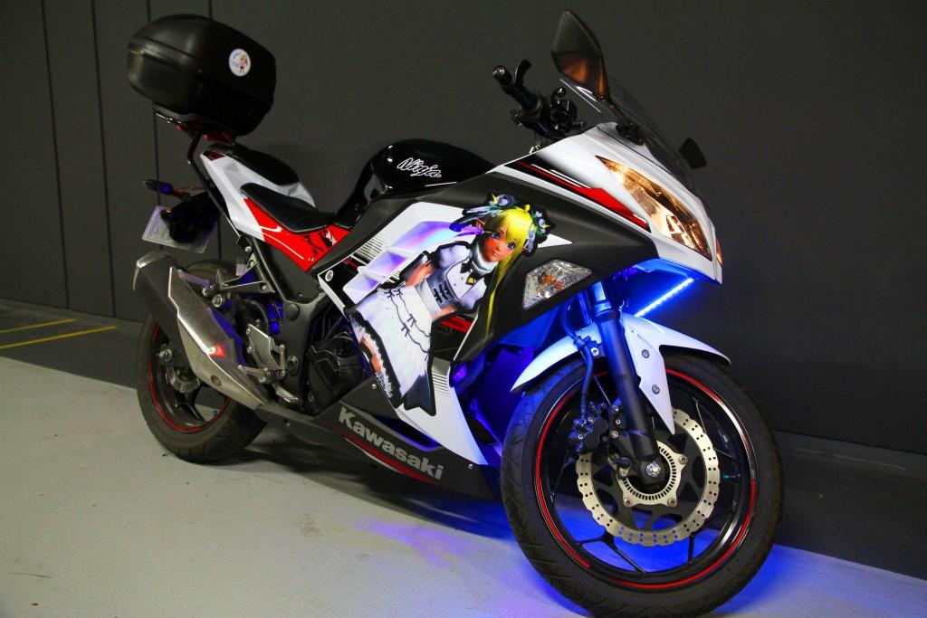 Ninja250 痛バイク 右サイド