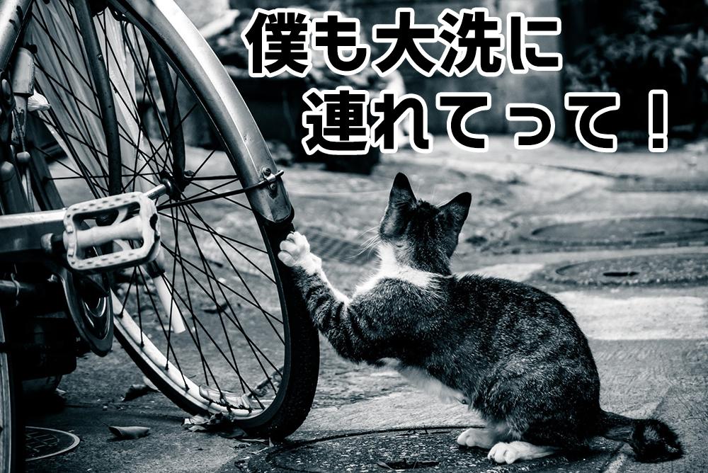 大洗の巡礼は自転車がおすすめ